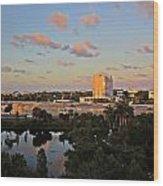 Fort Lauderdale Scene Wood Print