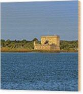 Fort Matanzas - Saint Augustine Florida Wood Print by Christine Till