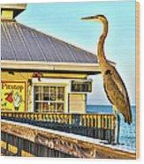 Fort Myers Beach Bird On Pier Wood Print