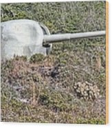 Fort Pickens Shore Battery  Wood Print
