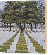 Fort Snelling National Cemetery Wood Print