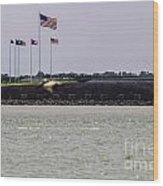 Fort Sumter Wood Print