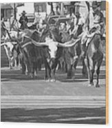Fort Worth Herd Cattle Drive Wood Print