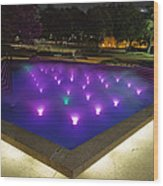 Fort Worth Water Garden Aerated Pool Wood Print