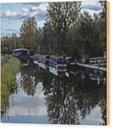 Forth Canal Reflection Wood Print