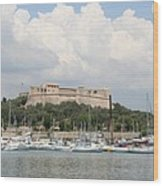 Fortress And Harbor - Cote D'azur Wood Print