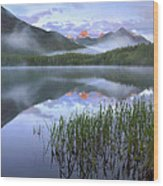 Fortress Mountain Alberta Canada Wood Print