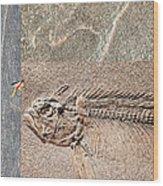 Fossil Fishing Wood Print