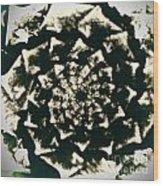 Fossil Wood Print