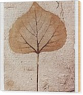 Fossil Leaf Wood Print