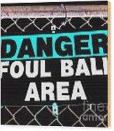 Foul Ball Area Wood Print