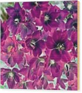 Found Rose - Photopower 1742 Wood Print