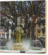 Fountain Alicante Wood Print