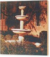 Church Fountain Night Shadows Wood Print