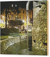 Fountain At Night Wood Print