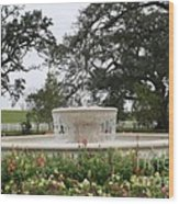 Fountain At Nottoway Wood Print