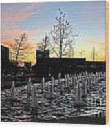 Fountain At Trinity River Campus 1566m Wood Print