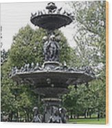 Fountain Boston Common Wood Print