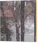 Fountain During Snowfall Wood Print