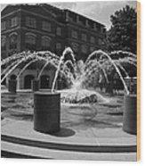Fountain In Charleston Wood Print