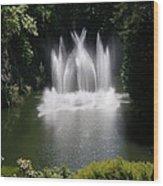 Fountain In Lake Wood Print