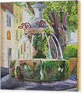 Fountain In Provence Wood Print