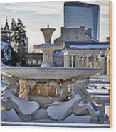Fountain In Repose Wood Print