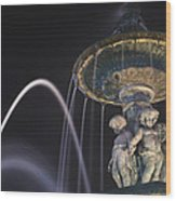 Fountain In Rossio Square By Night Wood Print