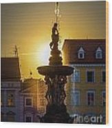Fountain In Sunset Wood Print by Filip Masopust