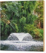 Fountain In The Park Wood Print