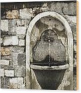 Fountain Of Ascona Wood Print