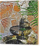 Fountain Of Friendship Wood Print