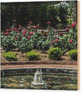 Fountain Of Roses Wood Print
