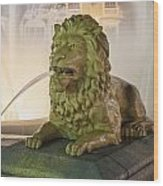 Fountain Of The Lions At Plaza Las Delicias In Puerto Rico Wood Print