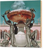 Fountain Of The Tortoises Ringling Museum Sarasota Wood Print