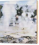 Fountain Paint Pot Yellowstone Np Wood Print