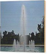 Fountain - Los Angeles County Arboretum And Botanic Garden Wood Print