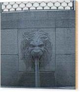 Fountain Seat Wood Print