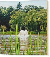 Fountain Side Wood Print by Greg Fortier