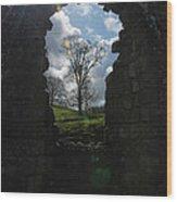 Fountains Abbey Wood Print