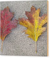 Four Autumn Leaves Wood Print