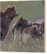 Four Bears Wood Print