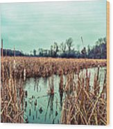 Four Corners Wetlands Wood Print