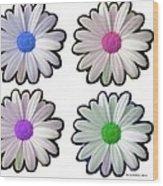Four Daisy Hibrids Wood Print