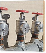 Four Emergency Water Valves Wood Print