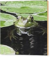 Four Eyed Frog Wood Print