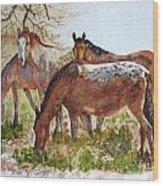 Four Horses Grazing Wood Print