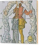 Four Humors Hippocratic Medicine Wood Print
