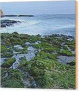 Four Mile Beach California Wood Print