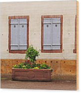 Four Pale Blue Shutters In Alsace France Wood Print